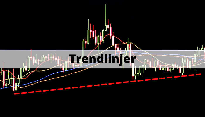 Trendlinjer