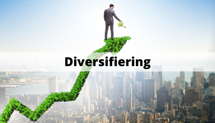 Diversifiering investeringar