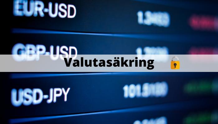 Valutasäkring av investering